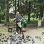 Derecho de Visitas de los abuelos con los nietos